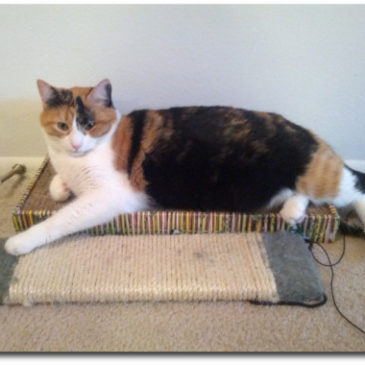 Best Cat Scratching Post That Works