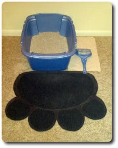 Kitty litter box