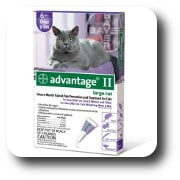 Bayer Advantage II