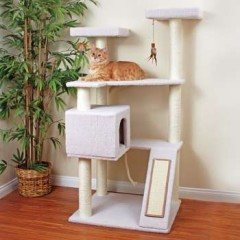 Petco Tree Terrace Review