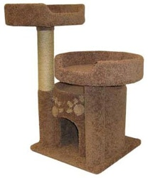Cat Condo With Two Perches