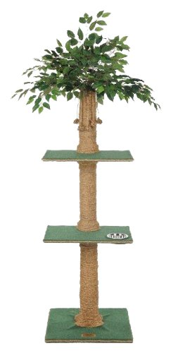Multi level Ficus cat tree with food bowl
