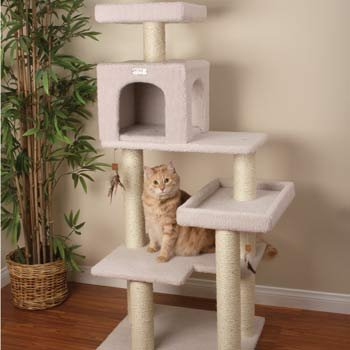 Petco Premium Tree Bungalow for Cats